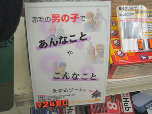 20070202sale_toei-p_gamepad_02.jpg